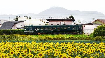 濃緑車両・キハ40 1810